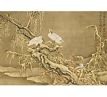 Shen Nanpin - Album Of Birds And Animals (Cranes). Forest view: forest , trees,  fauna, nature, birds, animals, flora, flowers, plants, field, weekend Photographic Print