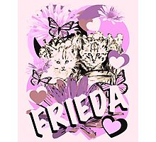 Frieda's Baby Cats in Pink Photographic Print
