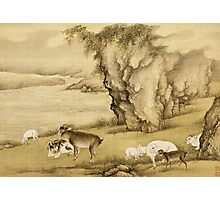 Shen Nanpin - Album Of Birds And Animals (Sheep And Goats). Forest view: forest , trees,  fauna, nature, birds, animals, flora, flowers, plants, field, weekend Photographic Print