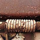 Rusty Rings © by Ethna Gillespie