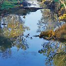 Morning on the Loddon by Harry Oldmeadow