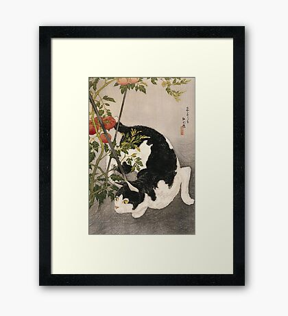 Takahashi Hiroaki - Cat Prowling Around A Staked Tomato Plant. Cat portrait: cute cat, kitten, kitty, cats, pets, wild life, animal, smile, little, kids, baby Framed Print