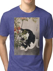 Takahashi Hiroaki - Cat Prowling Around A Staked Tomato Plant. Cat portrait: cute cat, kitten, kitty, cats, pets, wild life, animal, smile, little, kids, baby Tri-blend T-Shirt