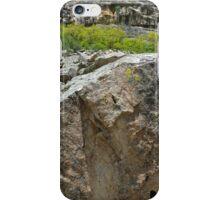 Nature is a wonderful artist iPhone Case/Skin