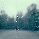 rainy road by Marianna Tankelevich