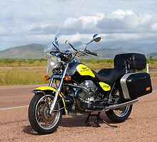 Moto Guzzi 1995 California 1100 by Paul Gilbert