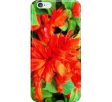 Scarlet Sage iPhone Case/Skin