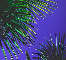 Palm trees by MZawesomechic