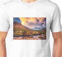 Paso Punta Union Unisex T-Shirt