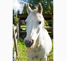 White horse Unisex T-Shirt