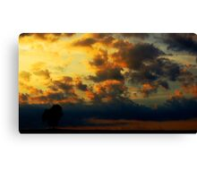 The Lonely Tree - midas touched sunset (2016) Canvas Print