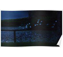 Egrets flight, first light Poster