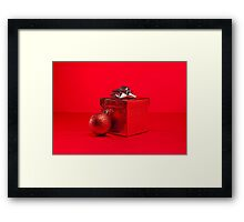 Red bauble and present in red Christmas setting Framed Print