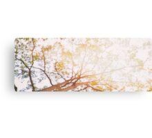 Beneath a Tree Canvas Print