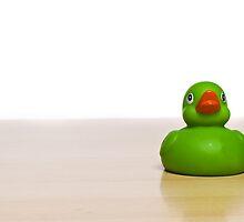 Duck by 3523studio