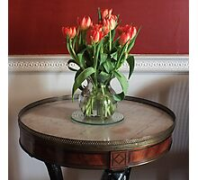Tulip Table Photographic Print