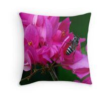 HEAR NO BUZZ-JUST BEE-CAUSE DECORATIVE THROW PILLOW Throw Pillow