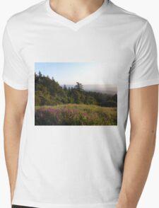 2015.04.03 1060696 Mens V-Neck T-Shirt