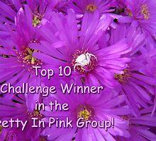 Pretty in Pink Top Ten Challenge Banner by Lee Jones