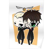 Draco & Harry Poster