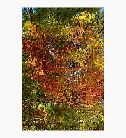 Colours of Nature Photographic Print