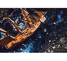 Ship in forest... Photographic Print