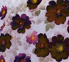 Vintage Roses Hips by Vitta