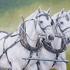 Percheron pair by Pauline Sharp