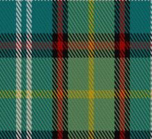 02648 Dunedin (NZ) District Tartan  Sticker