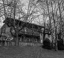 Rikli's Villa by PlanetAurora