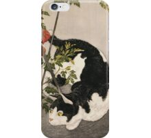 Takahashi Hiroaki - Cat Prowling Around A Staked Tomato Plant. Cat portrait: cute cat, kitten, kitty, cats, pets, wild life, animal, smile, little, kids, baby iPhone Case/Skin