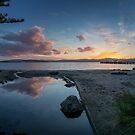 Pedro Dreams of Sunsets by Peter Kurdulija