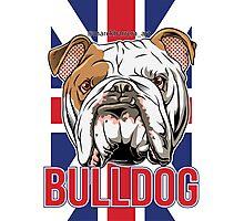 Bulldog Photographic Print
