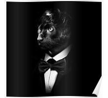Sir Panther  Poster