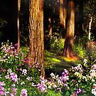 Forest Flowers by Nadya Johnson