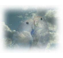 HEAVENLY DOVES Photographic Print