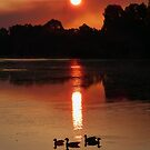 A Very Smokey Sunset by stevealder