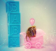 Baby Hermit Congratulations! by Skymall007