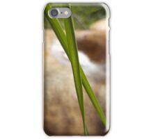 Fungrass iPhone Case/Skin
