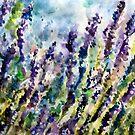 lavender cushion by pamfox