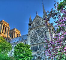 Notre Dame in Spring Glory .. HDR by Michael Matthews