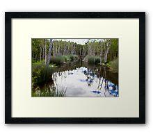 Lagoon at Karrawatha Framed Print