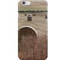 Hay Paddock - Second Valley iPhone Case/Skin