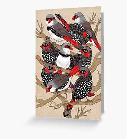 Firetails Greeting Card