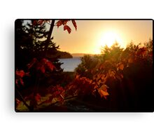 Fall on the Bras d'Or Canvas Print