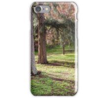 The Blue Bench Seat iPhone Case/Skin