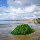 Lyme Regis Summer Seascape - Impressions by Susie Peek