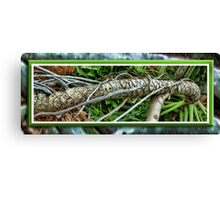 Palm Survival Canvas Print
