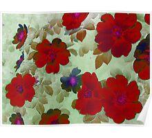 Vintage Red Roses Hips Poster