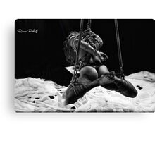 The Skydiver Canvas Print